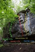 Rock Climbing Photo: trash.com -> Recycler -> Nuts and Honey -> Trash T...