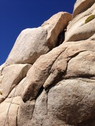 Rock Climbing Photo: Leading Squirmney
