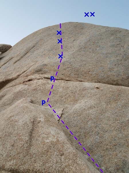 Bolt ladder route