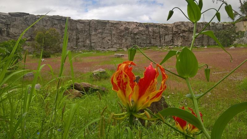 Cleveland Quarry