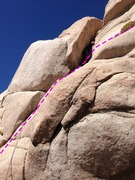 Rock Climbing Photo: head for the bush