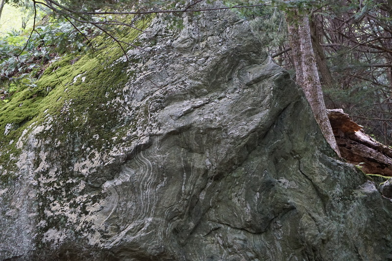 Rock Climbing Photo: Wonder Bread Top