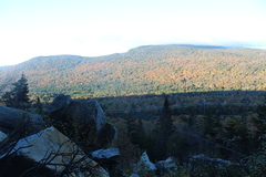 Rock Climbing Photo: View from the base of Button Buck.