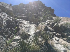 Rock Climbing Photo: Looking up the easy, vegetated section of P3. Mart...
