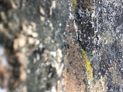 Rock Climbing Photo: Some rock near Yard Arm with lots of depth of fiel...