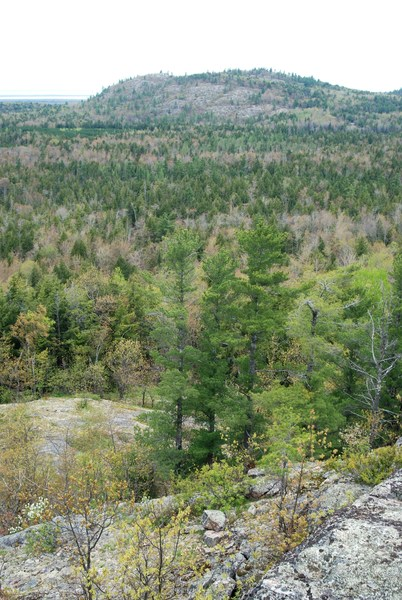 Bald mountain from Ghost