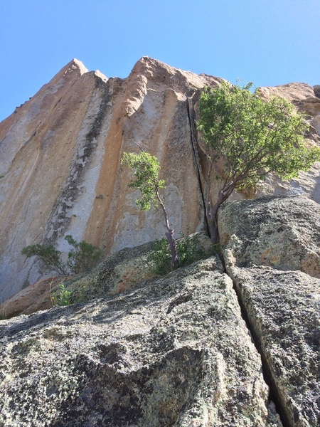 Rock Climbing Photo: Way steeper than it looks, (and much harder than 1...