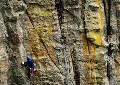 Rock Climbing Photo: Roy going ham!