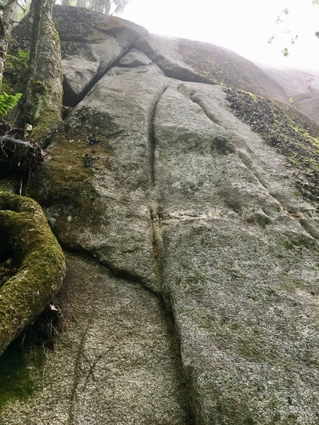 Rock Climbing Photo: Start at double maple tree (not seen in picture) a...