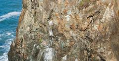 Rock Climbing Photo: Nick B. following the the fourth pitch downclimb, ...