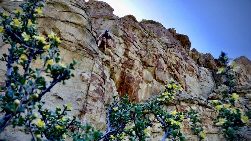 Rock Climbing Photo: Robert climbing 'The Eviction'
