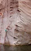 Rock Climbing Photo: Max Owens Elbows deep in the fang!! Photo: Natali...