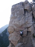 Rock Climbing Photo: Notice the flowers on the ledge!