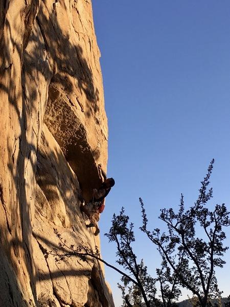 Cool climb