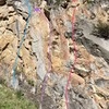This photo shows the right three routes on the west side of French Gulch Slab. From left-to-right: Vacas Muertos (blue), Charismatic Mega-fauna (purple), and No step on Snek (red).