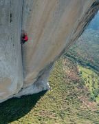 Rock Climbing Photo: Alex making history.  Photo Credit: Jimmy Chin