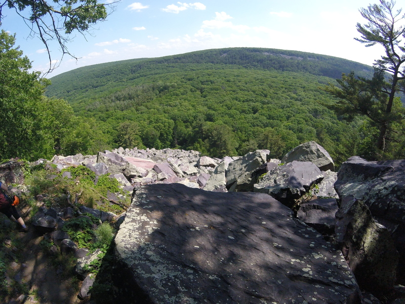 Rock Climbing Photo: Looking out over the trees