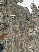 Rock Climbing Photo: 2nd pitch crux.