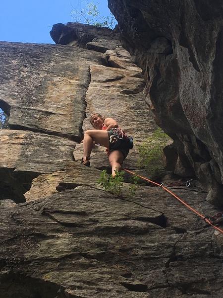 Michelle climbing Jungle Book
