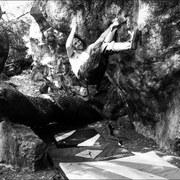 Rock Climbing Photo: Stan's Traverse