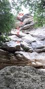 Rock Climbing Photo: Through the Looking Glass 5 bolts 1st bolt is hi...