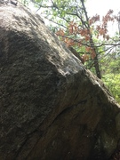 Rock Climbing Photo: White Gold