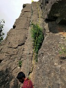 Rock Climbing Photo: Unknown 5.6 is the crack just right of the crack w...