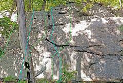 Rock Climbing Photo: Crazy Tree center right J. Dopey K. Sparky L. D...