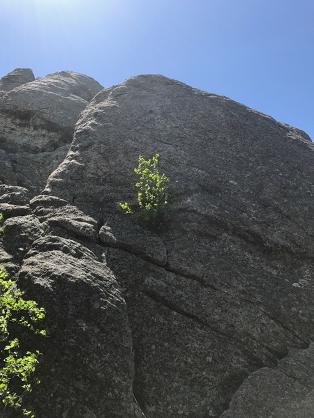 Fact or Friction. Not a great route- do it because you are there and need to learn to love slabs!