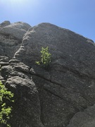 Rock Climbing Photo: Fact or Friction. Not a great route- do it because...