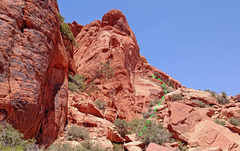 Rock Climbing Photo: approach to SouthEast Gully route on Calico Peak -...