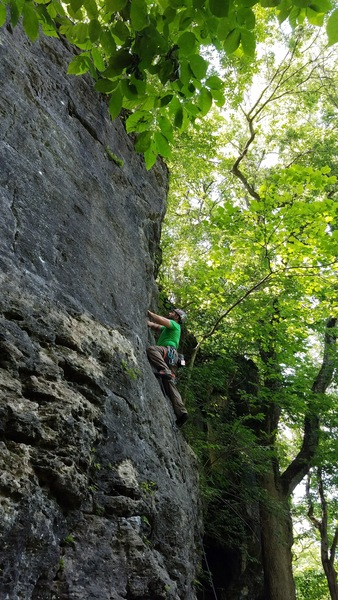 Rock Climbing Photo: Steve climbing 12 Pack (5.10c) at the Mad River Go...