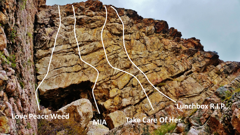 Rock Climbing Photo: An overview of the four bolted lines on the wall.