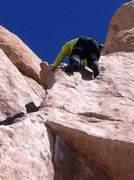 Rock Climbing Photo: Sexy Grandma J-Tree