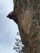 Rock Climbing Photo: Josie on Towering Inferno.  Photo by Todd McGregor...