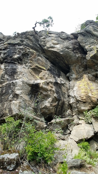 Rock Climbing Photo: Bonzai