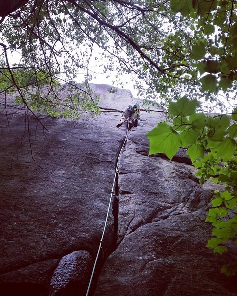 Rock Climbing Photo: 2/3 the way up. Amazing climb.