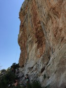 Rock Climbing Photo: Si te gusta el pique, pique, climbs the steep wall...