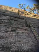 Rock Climbing Photo: Looking up at the climb. The tree on the climb is ...