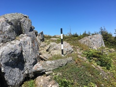 Rock Climbing Photo: Turn left off of the East Coast Trail at this mark...