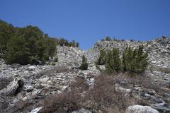 Rock Climbing Photo: Approach gully.