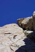 Rock Climbing Photo: The Gazelle contemplates the loooong way to go...