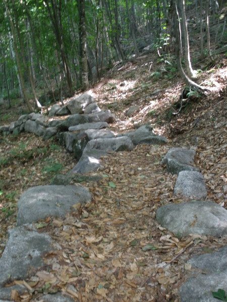 """Hardened"" section of trail; when you get here you're about 2 min from the climber's path cairn(s)"