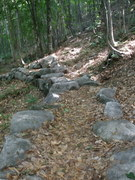 "Rock Climbing Photo: ""Hardened"" section of trail; when you ge..."