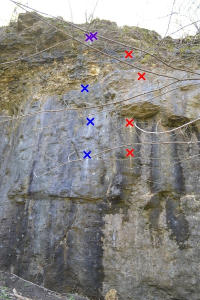 Photo of Tire Fire (5.11a) (blue) and Meltdown (5.11c) (red)- shared anchors (purple)