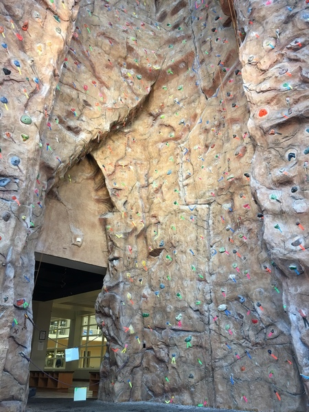 Rock Climbing Photo: Georgia Southern University toprope cave.