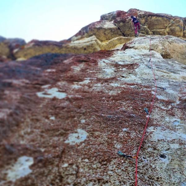 Rock Climbing Photo: Rachel nabbing the 2nd ascent.