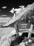 Rock Climbing Photo: Road Side Alpine!!!!