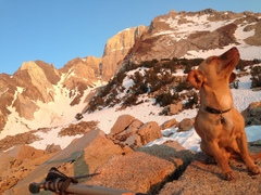 Rock Climbing Photo: The Weasel and The East Ridge!