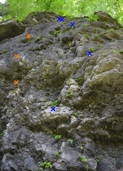 Man with a Beard (5.12b) (orange) (left) and Recyclable Stone (5.11b) (blue) (right). Shared anchors.